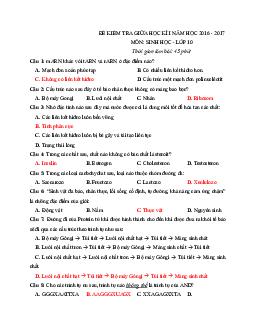 Bộ 40 Câu trắc nghiệm ôn thi Giữa học kì 1 Sinh học lớp 10
